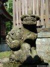 Kinkenguu200910034