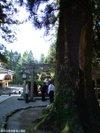 Shirayamahimejinjya2009100412