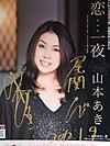 Yamamoto_aki_20120109c