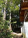 Tsuburajii201203111